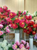 Peony Flowers di Rich e di Flourishing