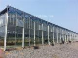 Gewächshaus-Luft-Entlüfter-Geflügelfarm-Luft-Entlüfter-Absaugventilator