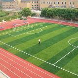 Md Kunstmatige Gras van het Voetbal en van de Voetbal van de Reeks het Professionele
