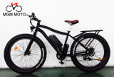 De ' vélo chaud de la vente E grosse alimentation électrique du pneu 20 grande