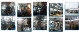 Motor profissional da fábrica de China da tampa branca