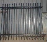 Ferro saldato rivestito della polvere nera che recinta rete fissa provvisoria