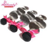 Fashion Ombre Color Body Wave Cheveux humains de Remy de Malaisie