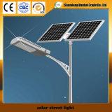 Уличный свет высокого качества солнечный с панелью солнечных батарей (12W~30W)