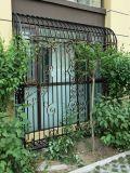 Verwendeter geschweißter galvanisierter Stahl schwarzes Puder-beschichtender bearbeitetes Eisen-Zaun-/Ranch-/Garden/Pool, der mit flachgedrückter Stange (ZY429, ficht)