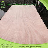 Высокое качество 2.2mm Okoume Door Skin Plywood From Linyi Qimeng