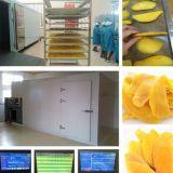 Secador de bandeja industrial de la fruta del acero inoxidable de Spply de la fábrica