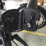 전기 자전거 (JB-TDN12Z)를 접히는 En15194 증명서