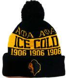 Beau chapeau de tricotage chaud brodé de subsistance (S-1079)