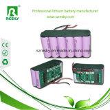 pacchetto della batteria di 48V 10ah con il USB per la bici elettrica, Ebike grasso, incrociatore della spiaggia