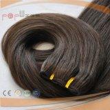 Hochwertiges seidiges gerades Verhältnis-Haar-volles Häutchen Intact auf dem Hiar Extensions-Spinnen (PPG-l-0639)
