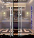 Type de Dimon H traitement de porte en verre d'acier inoxydable avec le blocage DM-DHL 015