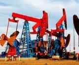 Natrium CMC van het Product van de Rang van de olie het Boor Chemische