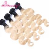 Nessun capelli umani cinesi di Ombre di Bodywave dei capelli chimici del Virgin i migliori