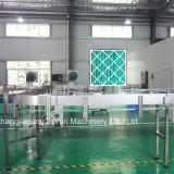 Завод автоматической питьевой воды разливая по бутылкам/оборудование/линия цены