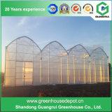 야채를 위한 농업 다중 경간 플라스틱 온실