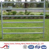 5ftx12FT 이용된 가축 위원회/미국 가축 가축 우리 위원회