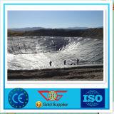 espesor de 0.25m m con el HDPE de Geomembrane del Ce para el terraplén