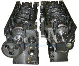 Original/OEM Ccec Dcec Cummins Engine 예비 품목 수도 펌프 임펠러
