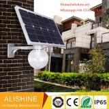 12W 지능적인 Bluetooth 통합 태양 LED 거리 정원 램프