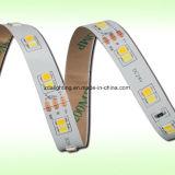 """12V-24V 60LEDs/M SMD2835 6000k는 백색 """"S"""" 모양 LED 리본을 냉각한다"""