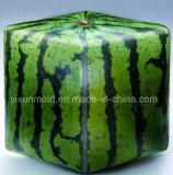 De plastic Vorm en de Producten van de Delen van het Geval van de Watermeloen van de Injectie Vierkante