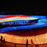 Indicatore luminoso di natale netto dell'indicatore luminoso 5mm LED delle decorazioni del LED