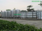 Unreine Wasserbehandlung RO-Pflanzen-/Trinkwasser-Reinigung-System