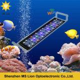 Fernsteuerungssonnenaufgang-und des Sonnenuntergang-LED Aquarium-Licht 144W