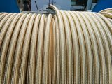 """長く時間1/4の"""" ~ 2 """" SAE 100の鋼線のブレードが付いているR16油圧ホースを使用して"""