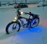 脂肪質の巡洋艦の雪の電気自転車48V 1000W