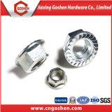 Noix de la bride DIN6923 galvanisées par M10