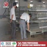 Automatisches Geflügel überlagern Rahmen-Systems-chinesisches landwirtschaftliche Maschine-Geflügel-Ackerbau-Gerät