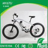 Bicicleta elétrica da sujeira da montanha de 26 polegadas com a roda gorda do pneu