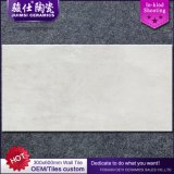 Azulejo de la pared del cuarto de baño del equipamiento casero de Foshan 300*600