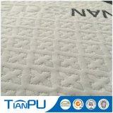 Polyester-strickendes Gewebe der 35% organisches Baumwolle65%