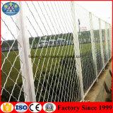 Preiswertes Ineinander greifen-Stahlsicherheits-Fenster-Zaun