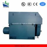 Große/mittelgrosse Hochspannungsrutschring 3-phasige asynchrone Wechselstrom-elektrische Induktions-Bewegungselectromotor-Serie Yrkk