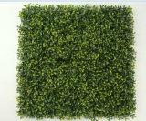 Los paneles de cubierta plásticos de la pared vertical de la hierba para la decoración de la cerca del jardín