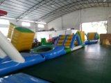 Capretti e giochi gonfiabili adulti dell'acqua del ricorso di estate grandi che fanno galleggiare sosta