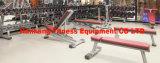 Macchina di forma fisica, strumentazione di ginnastica, pressa Strumentazione-Messa Body-Building del piedino (PT-918)