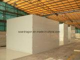 Sitio del congelador del almacenaje de los pescados de 30m3