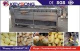 Machine de lavage et d'épluchage complète de chips de patates automatiques