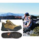 広州の防水安全靴の工場をハイキングする品質の革