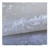 Couro sintético caraterístico do plutônio da decoração interior da pintura