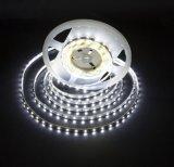 Certificazione dell'UL (E364593), 300 piedi flessibili dell'indicatore luminoso di striscia del LED SMD 3528 16.4 (5 tester)