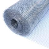 Reticolato di saldatura galvanizzato produttore-fornitore della maglia 1/4 '' 1/2 '' della Cina