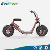 scooter électrique de roues de la CE 1200W et du scooter 2 de RoHS Harley