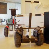 ريح روفر 2 عجلة يقف لعبة غولف [موتور سكوتر] نفس يوازن [سكوتر] كهربائيّة