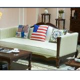 Amerikanische Art-modernes echtes Leder-Sofa für Hauptmöbel (AS845)